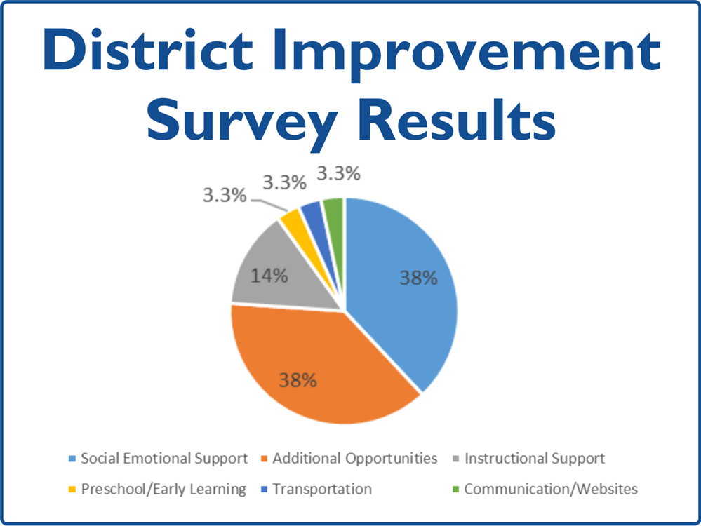 District Improvement Survey Summary